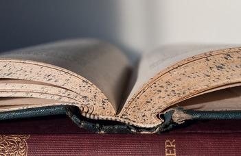 Konferenciák, publikációs lehetőségek, új kiadványok